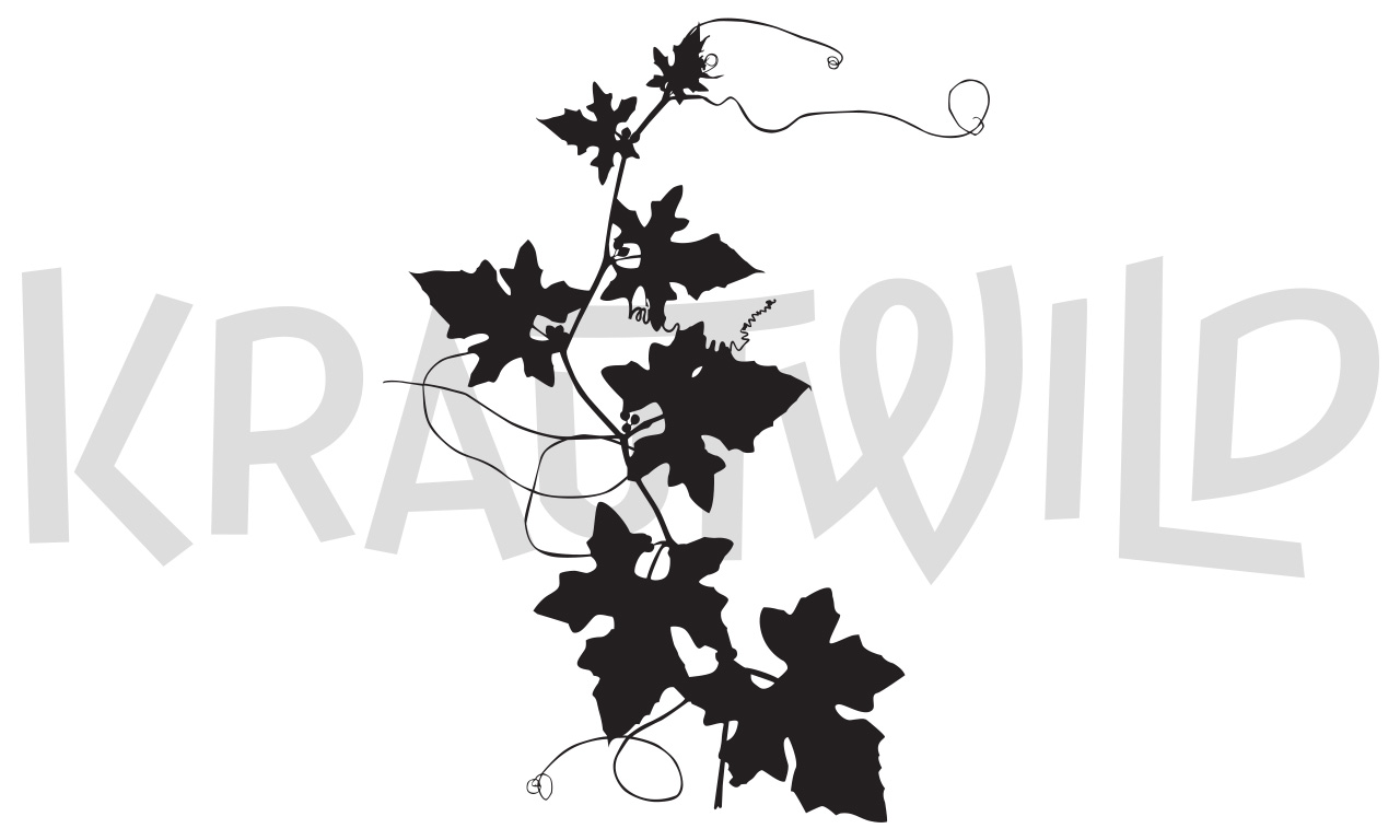 krautwild-zaunruebe-5-1280x768
