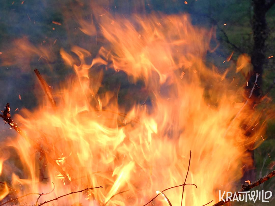 Feuergeist
